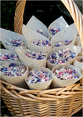 Natural biodegradable petal wedding confetti 4 pints