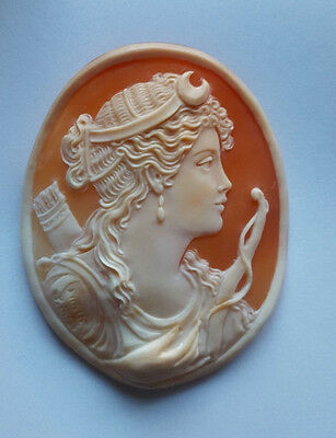 Shell Cameo Carved Very Fine Amazing Diana
