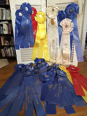 Vintage Horse Show Ribbons Blue First Place Tennessee Walking WI TN Lot of 26