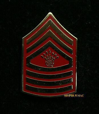 Master Gunnery Sergeant Mgysgt E-9 Lapel Hat Pin Up Insiginia Rank Us Marines