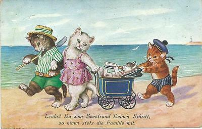 Cat family have day at the beach