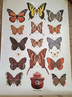 SMOKEY BEAR Poster BUTTERFLIES U.S. Department Agriculture Forester - Gorgeous!