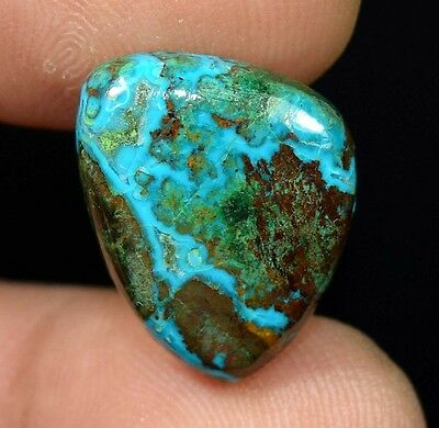 12.65 Cts. 100% Natural Chrysocolla Fancy Cab Loose Gemstones Platinum_Gems
