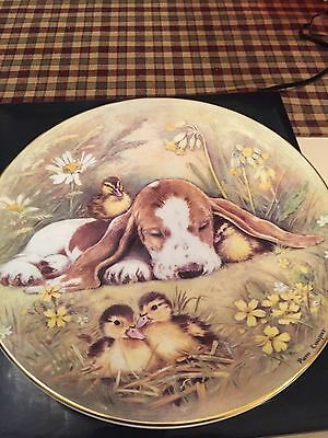 Royal Worcester Plate Forty Winks By Pan Cooper
