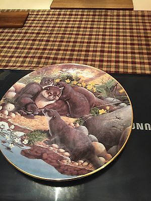 Royal Doulton Wild Life Plate By Adrian C Rigby