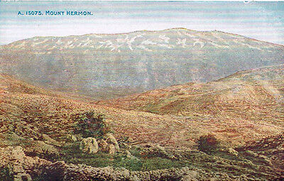Postcard On Paper Mount Hermon Blank Back