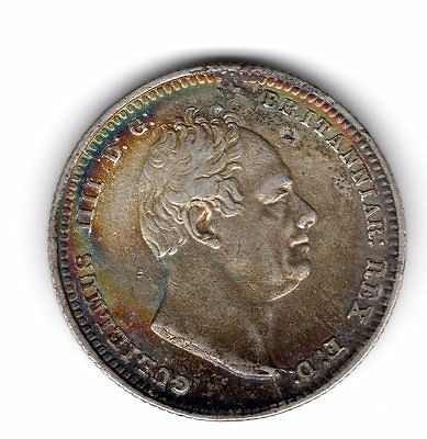 1834 Great Britain 1s Shilling Silver Coin William IV  nice EF/AU