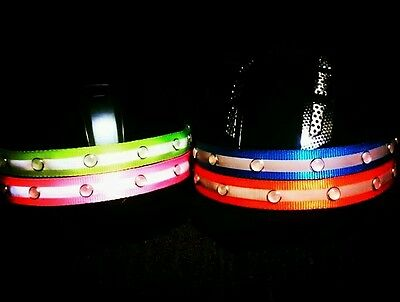 Helmet Band Equestrian Horse Riding LED reflective safety