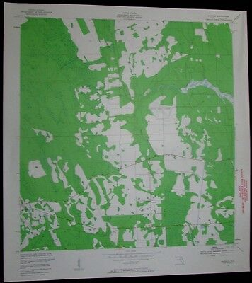 Samsula Florida Spruce Creek Airport vintage 1959 old USGS Topo chart