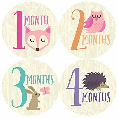 Woodland Monthly Baby Sticker, Baby Girl...NEW