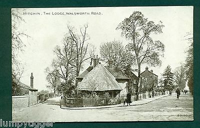 HITCHIN,THE LODGE,WALSWORTH ROAD,vintage postcard