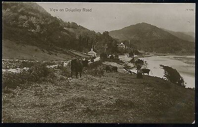 RP Postcard View on Dolgelley road Barmouth Meirioneth N.Wales