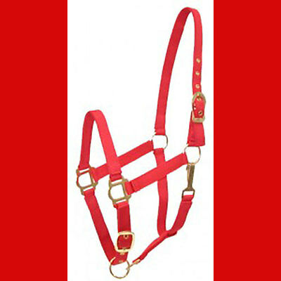 Nylon Halter Adjustable style RED Cob SIZE NEW!