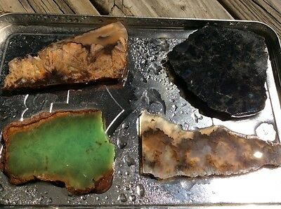 Lapidary Slabs Collection Mineral Specimens. S002
