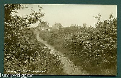 LIMPSFIELD,VIEW OF THE CHART BY H CAMBURN, vintage postcard