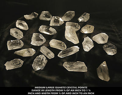 Lot 4FPXQ consists of 6 medium large sparkling quartz crystals by the point
