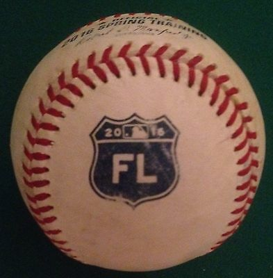 Detroit Tigers Game Used Rawlings 2016 Spring Training Baseball 3/4 BP HOME RUN