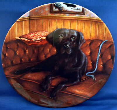 Adorable Black Labrador Retriever Dog Plate By Wedgwood Called Lady In Waiting