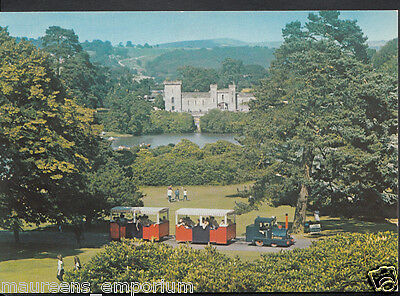 Staffordshire Postcard - Alton Towers, View Across Front Lawn   RR1411