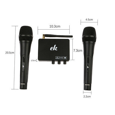 2 Wireless Mics Karaoke Machine Microphone Cordless Receiver for DJ KTV Meeting