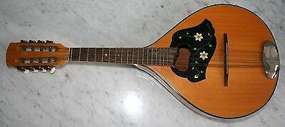 Vintage Mandolin in beautiful full playing condition