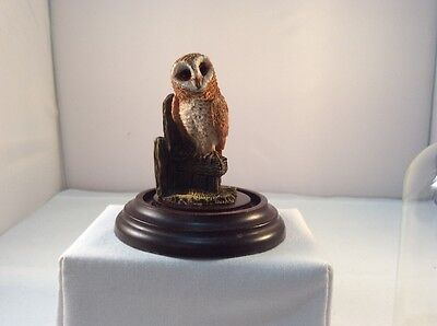 Country Artist Barn Owl on post with glass dome