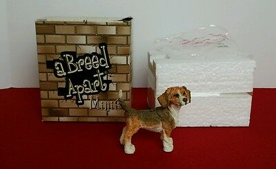 A Breed Apart Mini Beagle Dog Figurine 2004 Country Artists 70318 NIB
