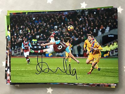 Andy Carroll West Ham United Fc Hammers Hand Signed 12X8 Photo