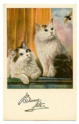 vintage cat postcard curious pair cats w fluffy tails watch bee insect