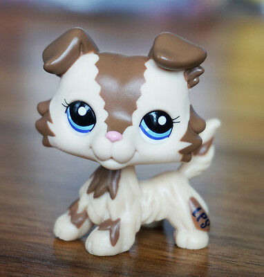 Cream Tan Brown Collie Dog Animals Puppy  Littlest Pet Shop LPS 2210 Blue Eyes