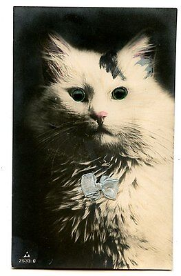 vintage cat postcard hand tinted real photo lovely cat green glass eyes bow 1922