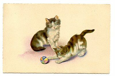 vintage cat postcard cute cats pair play w coloured ball toy
