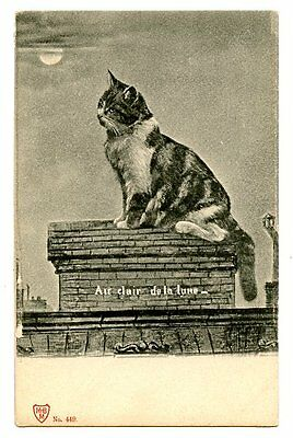 vintage cat postcard pretty cat sat on chimney roof top by moonlight early 1900s