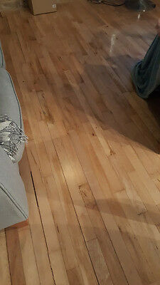 Reclaimed Canadian Maple Flooring Approx 30 square meters