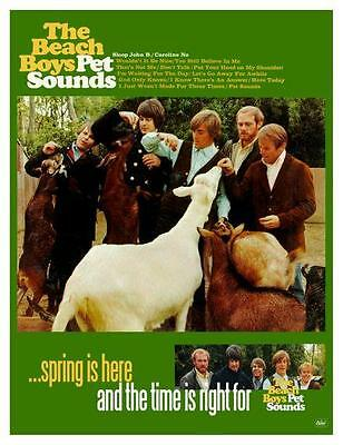 the Beach Boys POSTER Pet Sounds PROMO Ad - Brian Wilson - MUST SEE