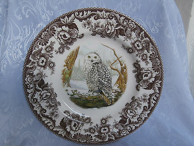 SPODE WOODLAND BIRDS OF PREY WINTER SNOWY OWL 10.5 Inch DINNER PLATE RARE NEW