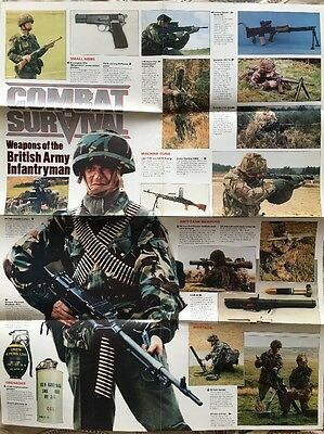 Weapons Of The British Army Infantryman Poster