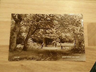 Queens Bower New Forest Postcard