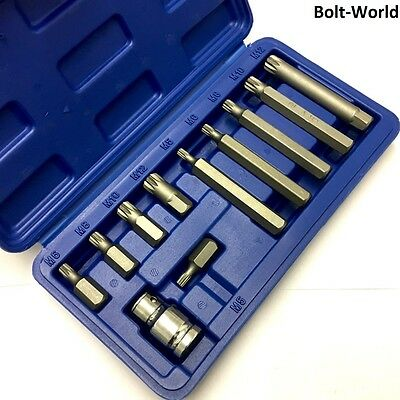 11Pc SPLINE BIT & SOCKET SET CRV M5 M6 M8 M10 M12 KIT & CASE LONG & SHORT REACH