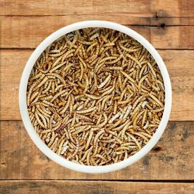 Dried Mealworms, Top Quality, All Sizes Wild Bird Food, Dried Mealworm