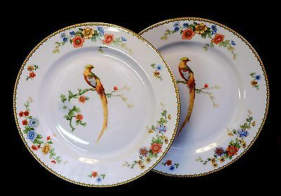 2 Czech Art Nouveau Dinner Plates Golden Pheasant Bird of Paradise Altrohlau MZ