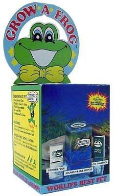 NEW Grow-A-Frog Kit - FREE SHIPPING