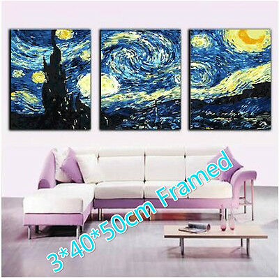Framed Set of Three 40*50cm Painting By Number Kit F3P022 Home Decor S3 AU STOCK