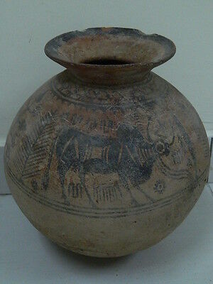 Ancient Huge Size Teracotta Painted Pot With Bulls Indus Valley 2500 BC #PT15677
