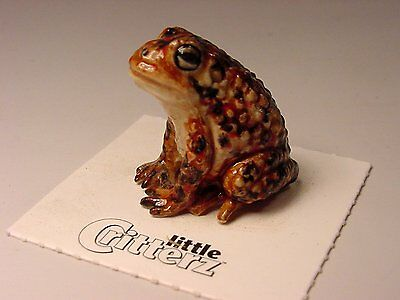 """Little Critterz - LC318 """"Bufo"""" American Toad"""