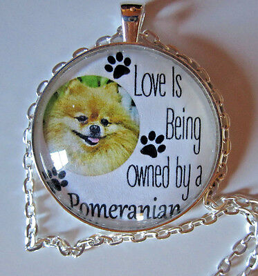 """Love Is Being Owned By A Pomeranian 1.5"""" glass pendant necklace jewelry /chn"""