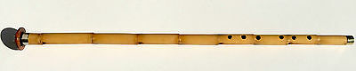 Turkish Professional Woodwind Ney Nay Flute With Horn Baspare