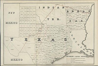 Texas state Southern Cattle Fever Indian Territory New Mexico 1885 antique map