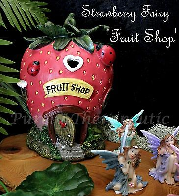 FAIRY STRAWBERRY FRUIT SHOP HOUSE~18cm High Garden Ornmanet Statue Magic Fantasy