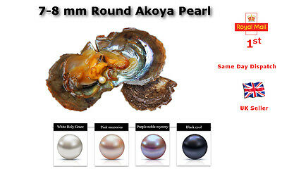 Pearl Party Akoya Oysters AAA 7-8mm Round Pearl At Least 1 Pearl In Every Oyster